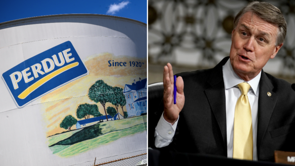 Chicken company targeted by boycotters over Sen. Perdue's 'racist' Kamala remarks despite ZERO affiliation
