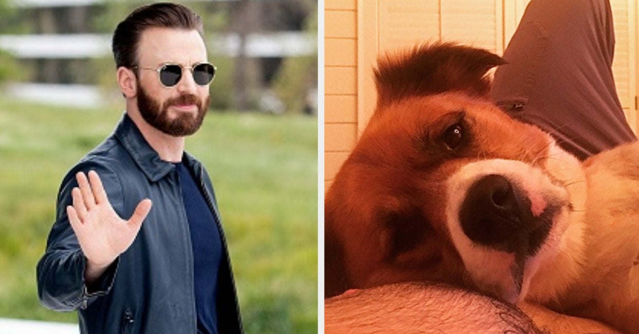 Chris Evans Has His Dog's Name Tattooed On His Chest