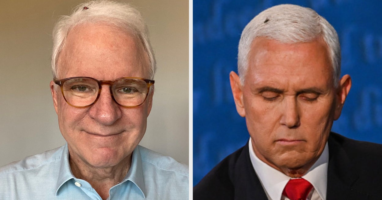 Steve Martin Already Has The Best Halloween Costume Of 2020
