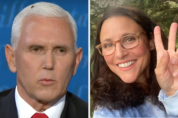 Julia Louis-Dreyfus's Response To The Fly On Mike Pence's Head Is Going Viral Because It's The Best One