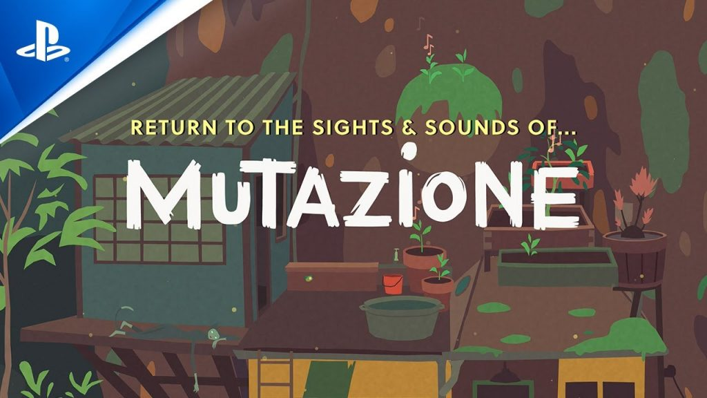 The makings of a collection: Mutazione's seed box