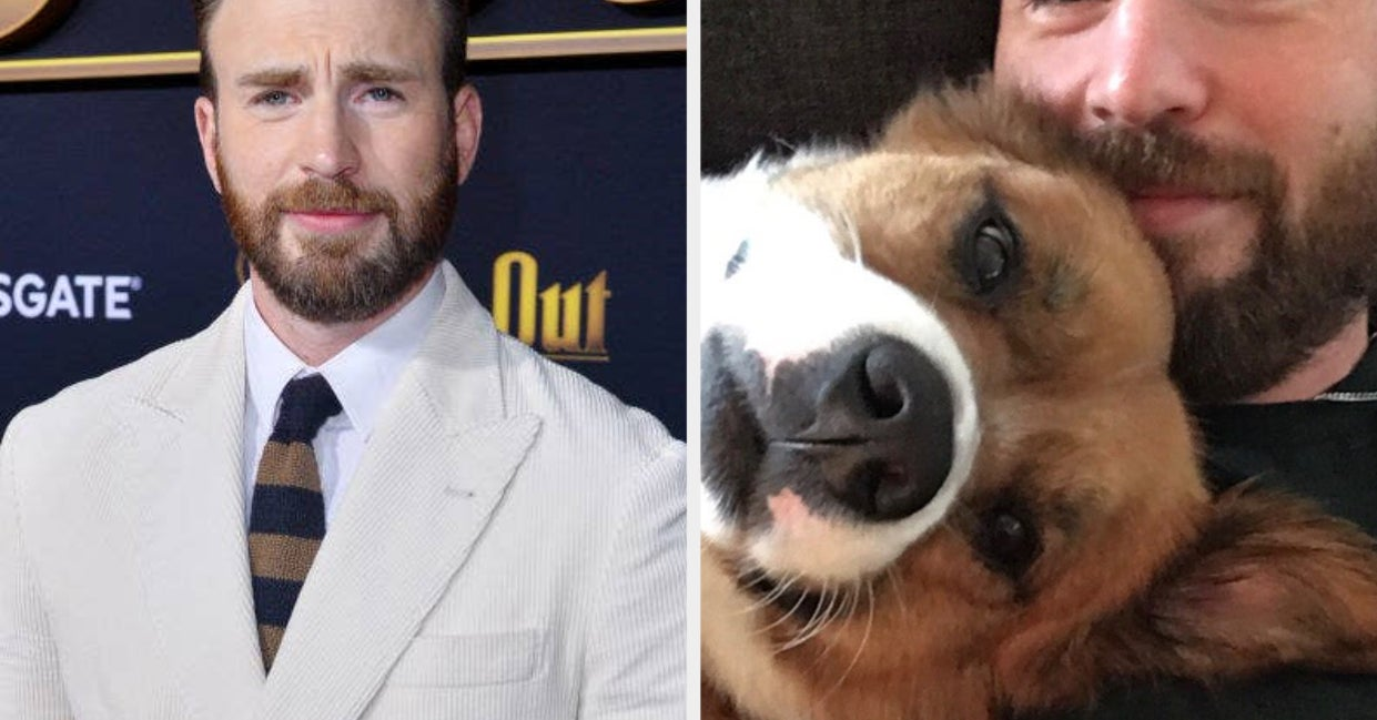 Chris Evans Is Adorably Embarrassed That He Named His Dog After A Cartoon