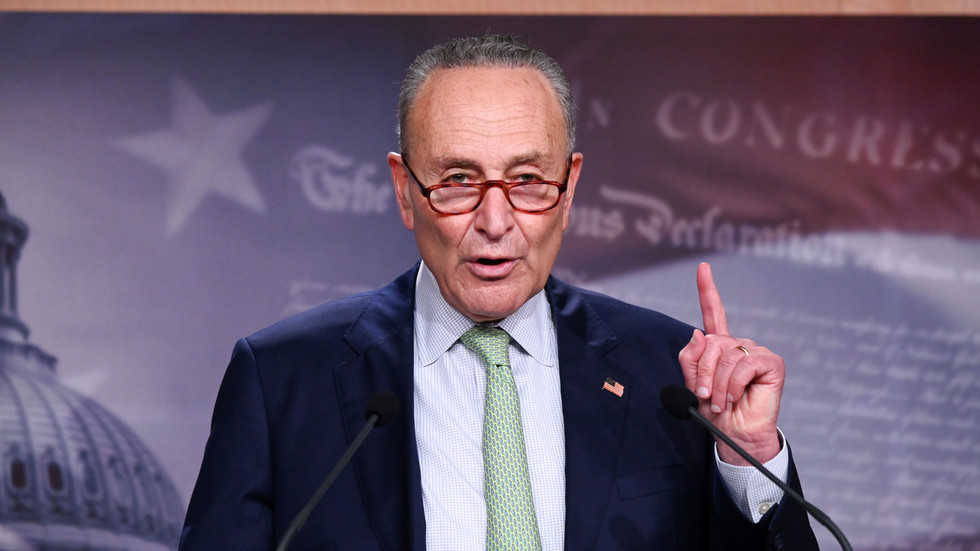 Senate Democrats' leader Schumer slams idea of virtual hearing for SCOTUS pick – but not all the other virtual Senate hearings