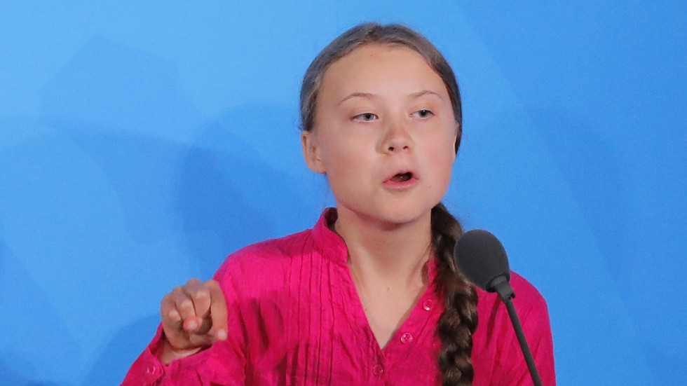 Biden supporters swoon over Greta Thunberg as Swedish activist tells Trump to 'chill' in response to his 'STOP the COUNT' call