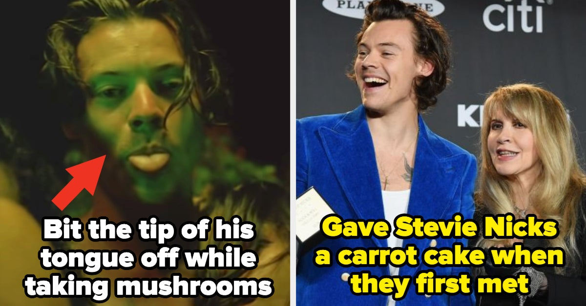 15 Interesting Harry Styles Facts You Probably Didn't Know Until Reading This Post