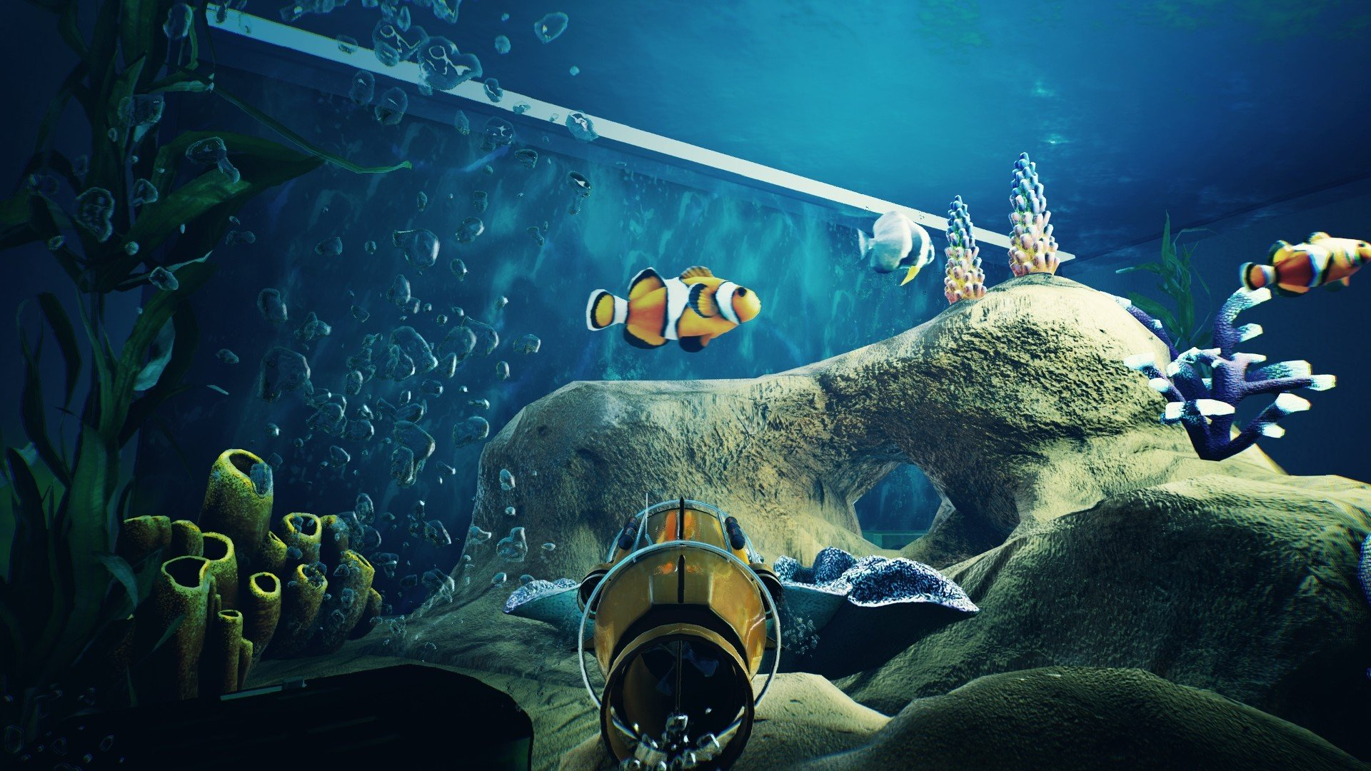 Fishkeeper Is An Upcoming Aquarium Game Inspired By The Sims