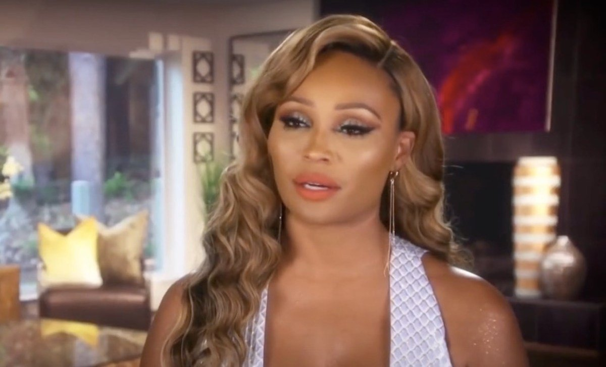 Cynthia Bailey Advises People To Vote – See Her Video Here